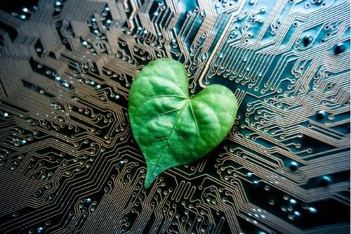 circuit imprimé et nature lien homme et végétal