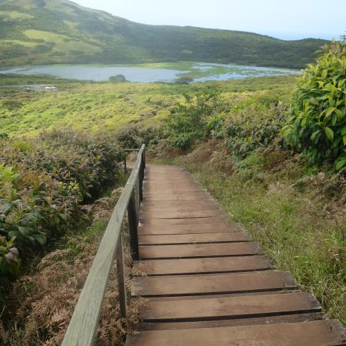 Leaving The Galápagos with a Guyaba Guarantee