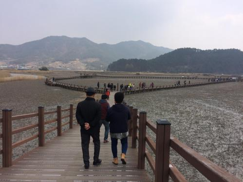 suncheon bay south korea