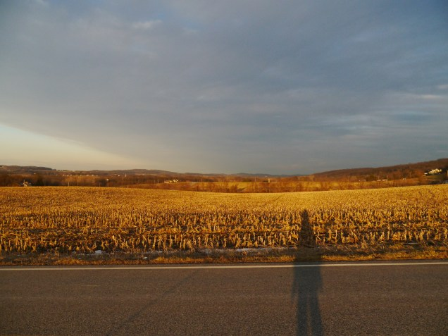 me and the sleeping corn field