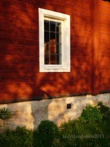 'iron oxide facade in the evening sun