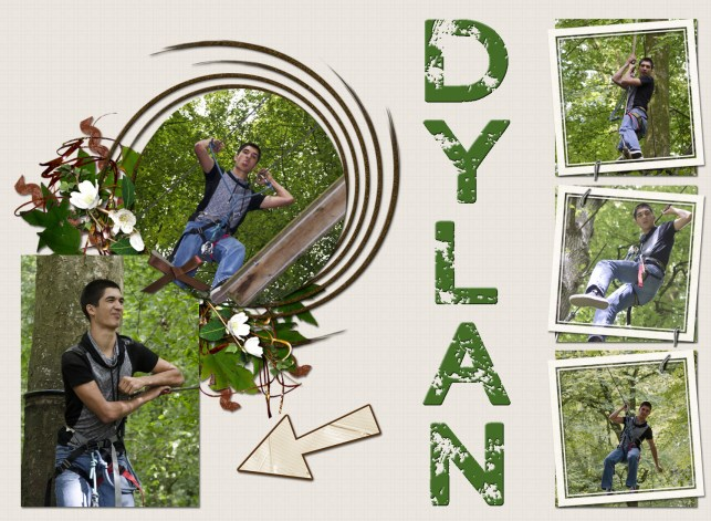 dylan-accrobranches