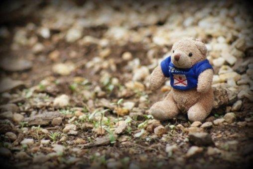 Teddy 23/52 2013
