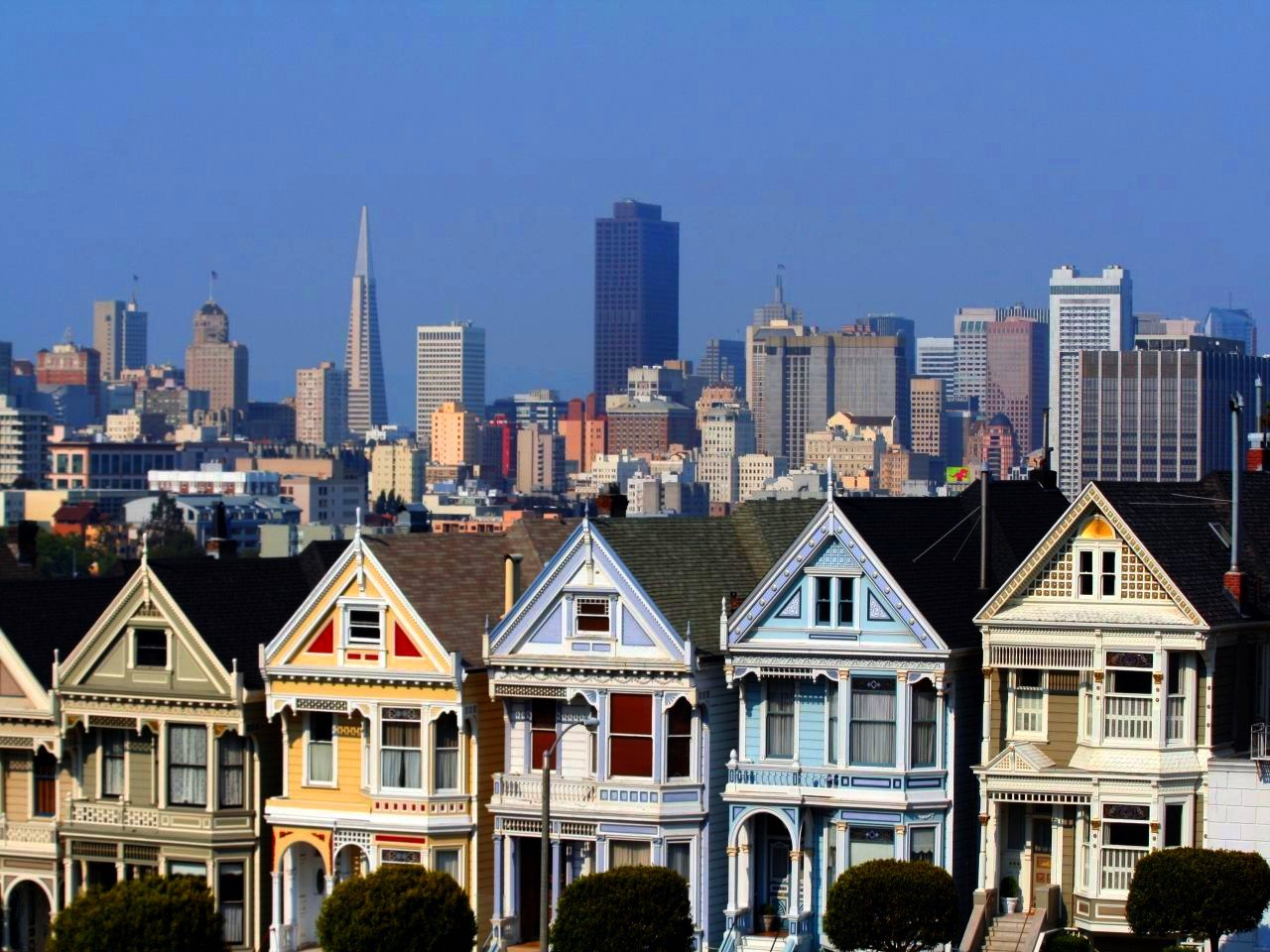 Leave Your Heart In Lovely San Francisco
