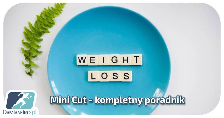 Mini Cut