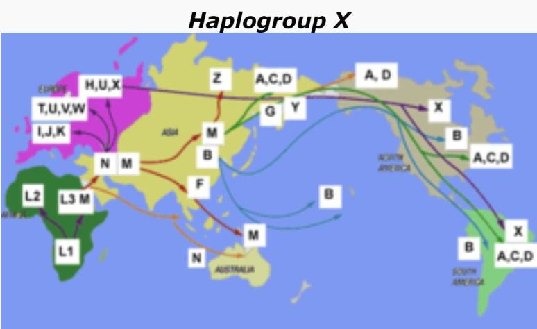Haplogroup X in China, Egypt, North Africa, Caucasus, Central Asia