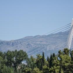 Predizborna obećanja: Podgorica će zelen grad biti, njim ćemo se ponositi