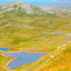 Sinjajevina zaslužuje stočare, planinare, Bera Grilsa... a ne oružje i vojne poligone