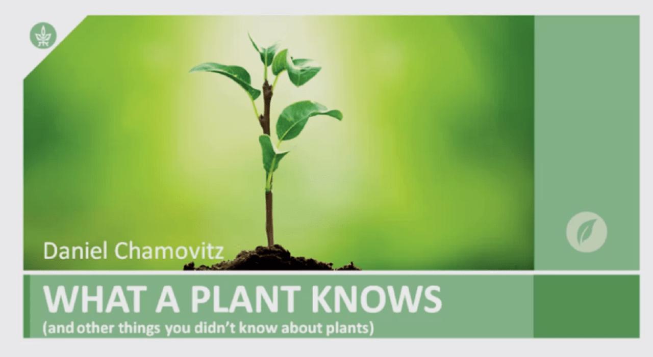 Šta biljke znaju