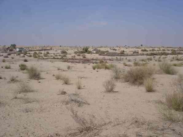 A few desert dwellings