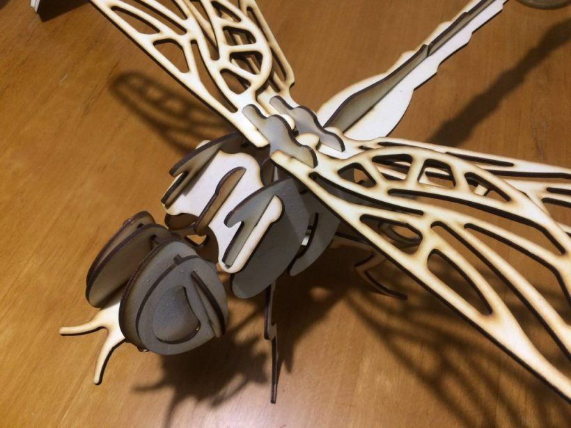 A laser cut dragonfly, with laser cutting burn marks intentionally left on