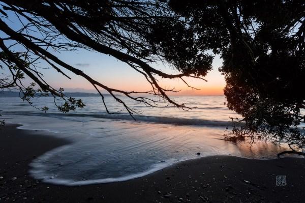 Damon Bay Photography Blog