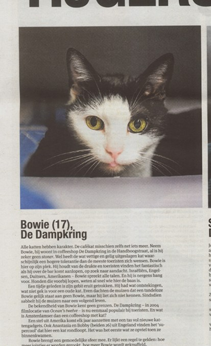 Bowie Famous as always