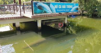 Hồ cá Hải tượng Đầm Sen