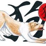 Куче – Китайски любовен хороскоп