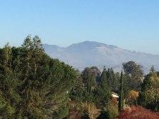 Walnut Creek - Mount Diablo
