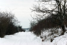 iarna pe drum