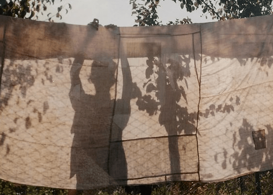 Shadows: White Supremacy And Eclipse Season