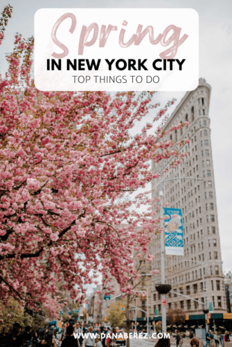6 Charming Things to do in NYC During Spring | How to Spend Spring in NYC | NYC Spring Photography