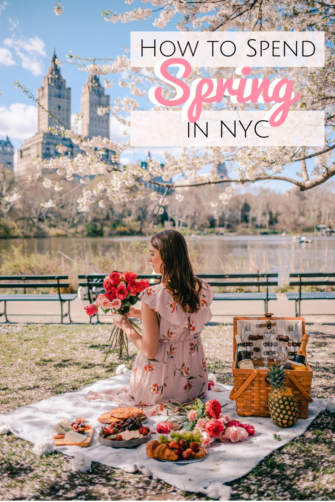 6 Charming Things to do in NYC During Spring | How to Spend Spring in NYC