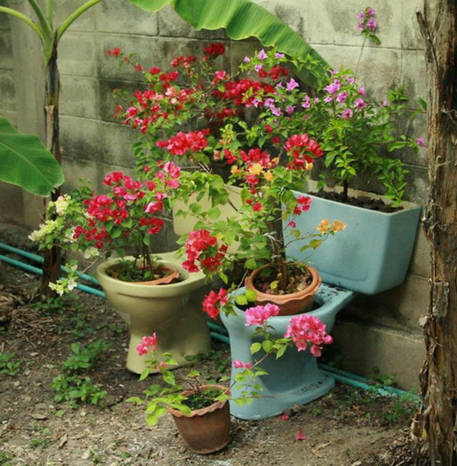 toilet_and_flowers_