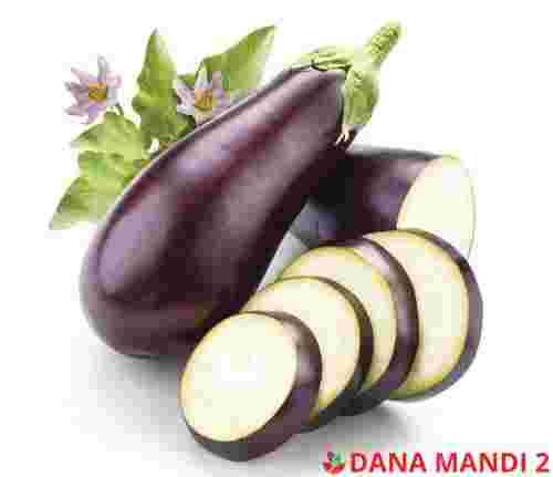 Eggplant (Sold by LBS)