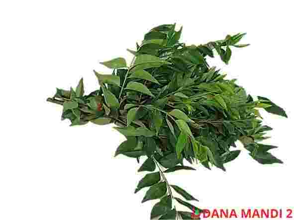 Curry Leaves (Sold by bag)