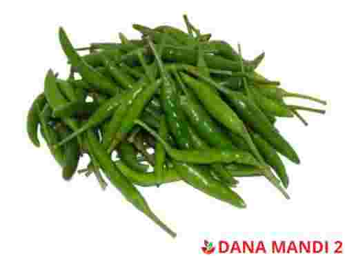 Green Chillis (Sold by LBS)