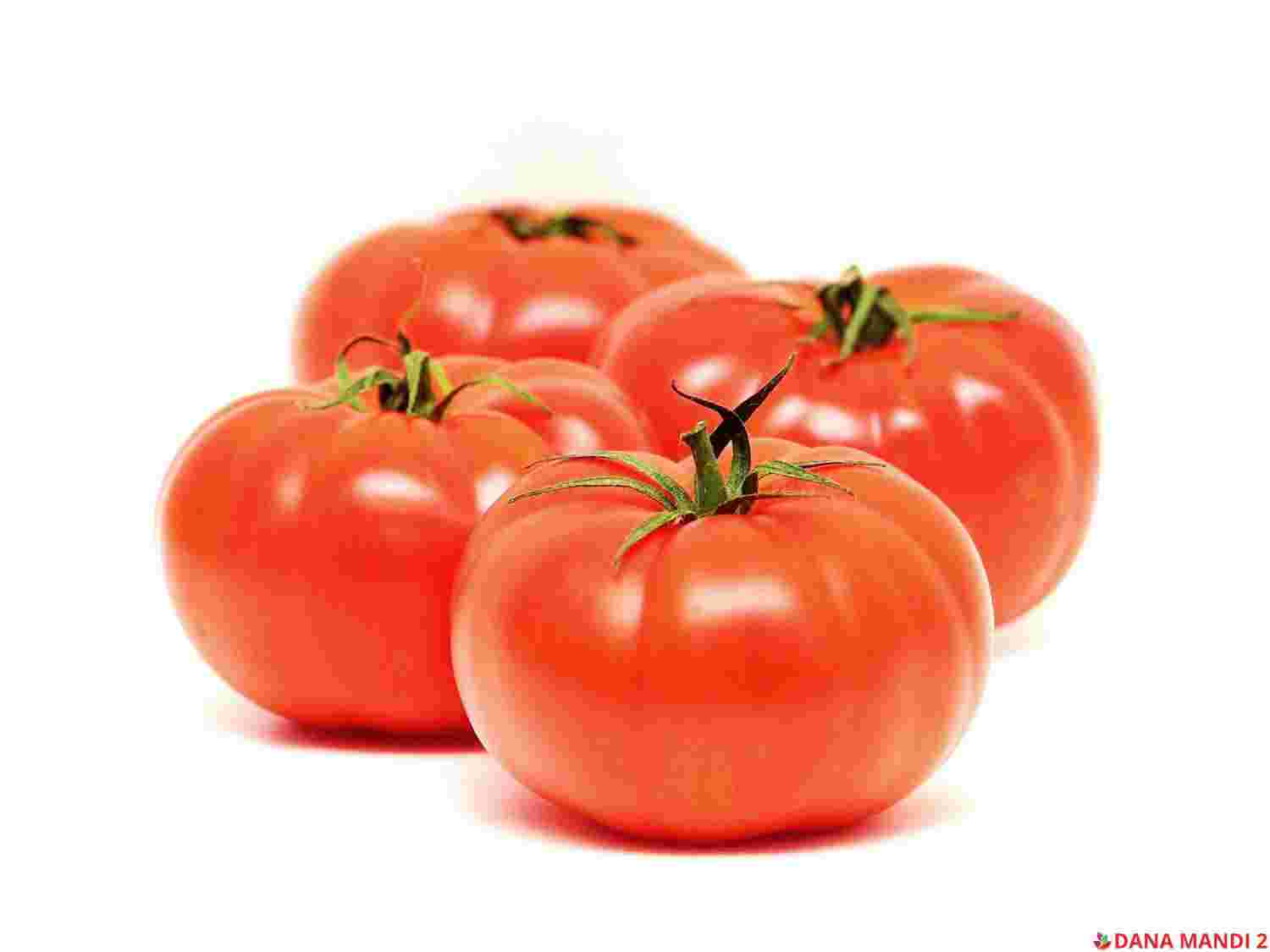 Tomato (Sold by LBS)