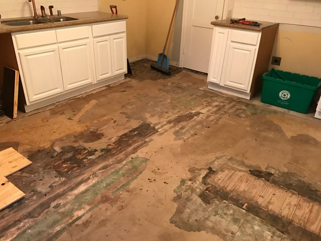 kitchen renovation, flooring DIY, kitchen tile, laying tile, david morris