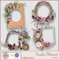 df_pbs_tender_memoir_clusters_preview