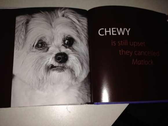 Chewy the Dog