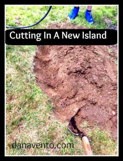cutting in a new island, gardening, diy, bed, new bed, planting, autumn, fall, how to, dana vento, outside, outdoor, End Of Summer Planting,DIY: Cutting In A New Bed Outdoors
