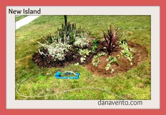 DIY: Cutting In A New Bed Outdoors, cutting in a new island, gardening, diy, bed, new bed, planting, autumn, fall, how to, dana vento, outside, outdoor