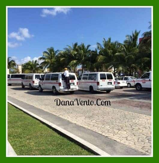 tours plaza in cozumel, travel, vacation, destination, family, tours, vans, private car driver, inside Cozumel, transportation, tourism, vacations, traveling, sightseeing, dana vento, cruising, flights, cars, tour guides,