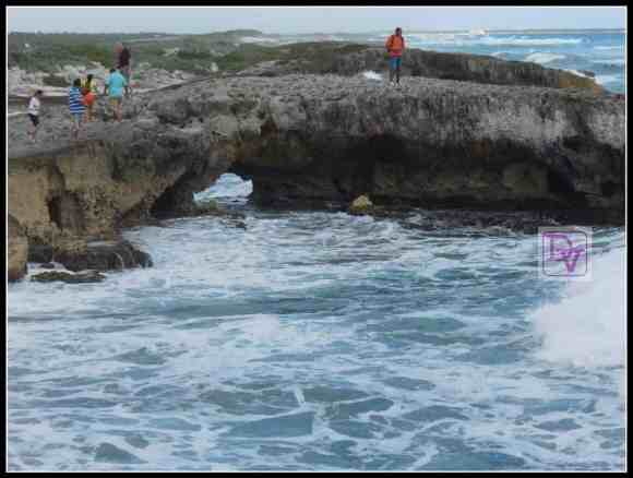 beach, mexico, tours plaza in cozumel, travel, vacation, destination, family, tours, vans, private car driver, inside Cozumel, transportation, tourism, vacations, traveling, sightseeing, dana vento, cruising, flights, cars, tour guides,