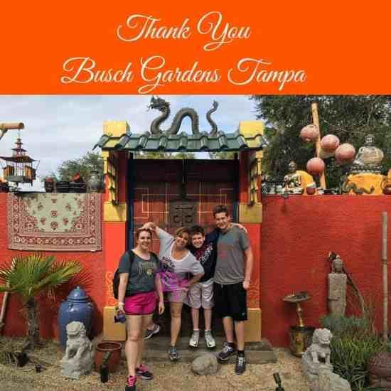 Best Day Go Busch Gardens Tampa Florida Resident Deals Unlimited Admission Busch Gardens