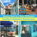 Savory Eats In 2 Very Different Southern Delaware Restaurants, crab, burgers fresh, drinks, families, lively libations, coffee and alcohol, sandwiches, platters, large servings, destination, yummy, fabulous food, food fresh prepped, the Chef does it all, dining, allergen friendly, Culinary Coast, handmade, traditional, teen, teen eats, family dining, casual atmosphere, beach area, Dewey Beach, Rehoboth Beach, Lewes, Beach, Boardwalk, restaurant, dine in, pick up, take out, delivery, hot spot, Culinary Coast of Food, EpiCenter of Food, vegetarian, pescatarian, carnivore, seafood, shellfish, crab, pizza, salad, burger, chicken, original eats, award winning, homemade, locations, parking, Dining out, restaurant, food out, good eats, no pots, no pans, no dishes, no cooking, eat out, enjoy life, good food, where to eat, restaurant star, restaurant recommendation, family dining, solo dining, couple dining, tables, chairs, eating out as family, dining out together, take a break from cooking, restaurant in USA, couples dining, family dining, try eating out, alcohol, libations, great drinks, cold, air-conditioned, foodies, culinary, culinary dining, culinary writer, travel and food, food and travel, Travel, travel as a family, traveling, traveling together, traveling solo, travel and adventures, travel time, travel in USA, destinations for travel, travel destination, travel and fun, fun and traveling, adventures of a family, family adventures traveling, travel places, travel around, travel by car, travel by plane, airplane travel, airplane seats, traveling with kids, traveling with teens, traveling as a family, traveling as a couple, trips, viaje, vacaciones, walk, bus, boat, cruise, jet, jetset, globetrotting together, globetrotting solo, passport travel, passport destinations, no passport required, travel with passports, travel without passports, pack, luggage, backpacks, travel bags, travel things, travel timing, travel planning, what you need to know, hotels, lodges, resorts, luxury travel, suites, rooms, poolside, beachside, oceanfront, East Coast, where to dine, dining in Delaware, Beach dining, Rehoboth Avenue, 1A, highway, close to shopping, close to fun, crowds, dinner, lunch, good eats, fast eats, good service, travel and food writer, Teen food writers, teen travel writers, where to find the eats. southern Delaware, back porch cafe, Lewes area, crooked hammock brewery, family dining, adult dining