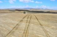 tracks across through the sandy soil