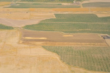 the 2 gold spots are where they thrashed & bagged the wheat that was harvested in that field