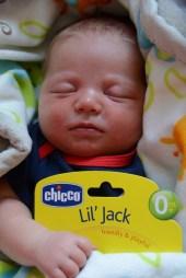 Ou Lil' Jack