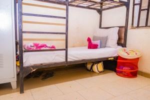 danbo_girls_hostel