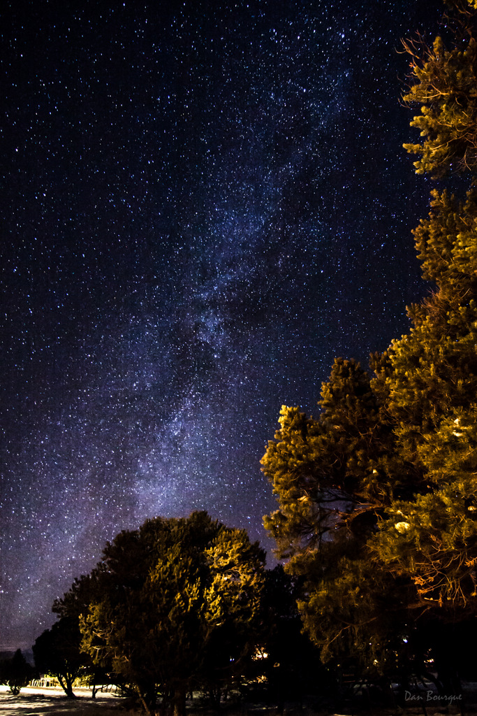 Light Show over the Trees Milky Way photo from Colorado by Dan Bourque