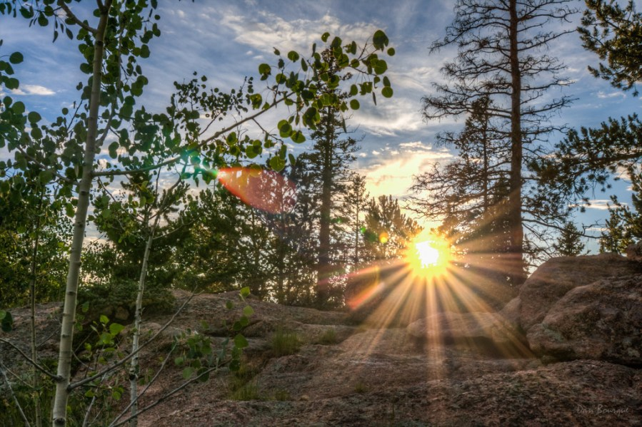 Perfect Rays Through the Forest landscape photo of Mueller State Park Colorado by Dan Bourque