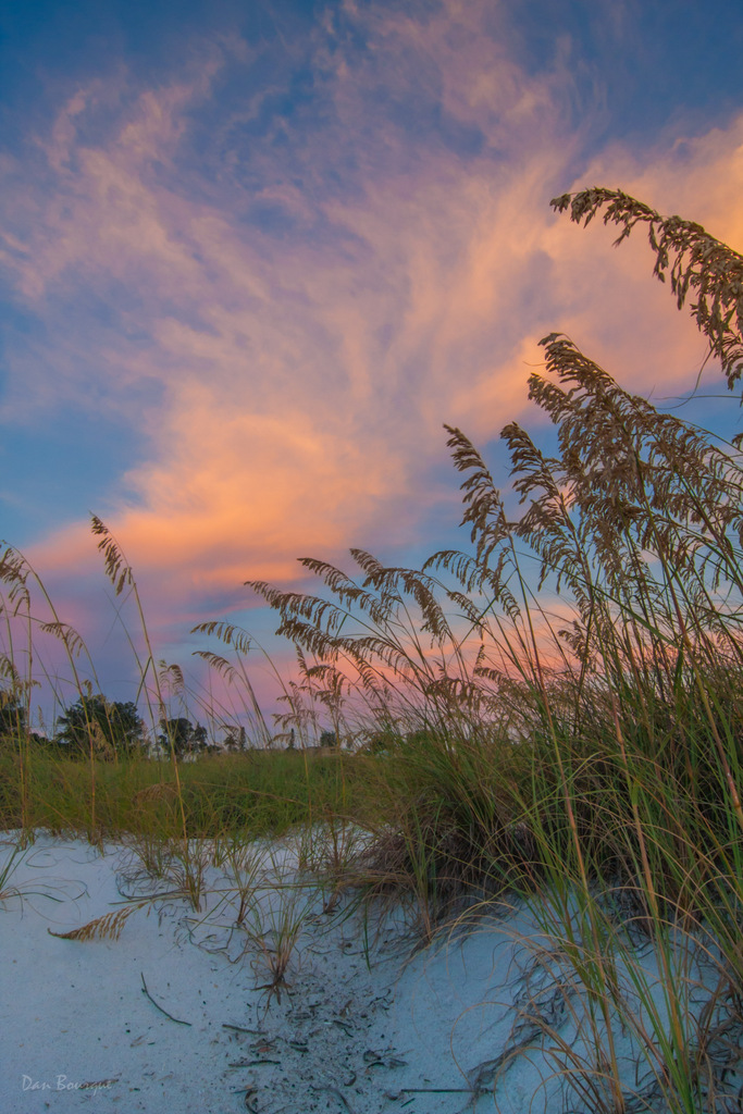 Sand Sea Grass and Sunset landscape photo of Florida Gulf Coast by Dan Bourque