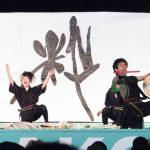 YOSAKOIソーラン(2013年:22回)大賞は、粋~IKI~ 北海学園大学