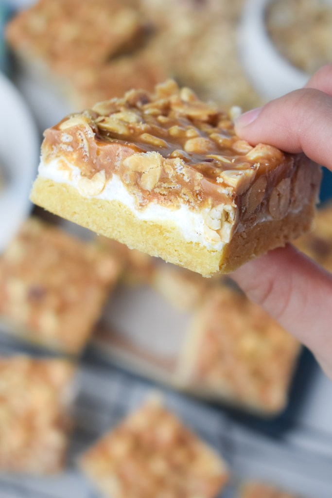 Salted Nut Roll Bar in someone's hand