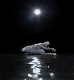 Royal New Zealand Ballet presents Swan Lake