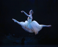 Queensland Ballet Soloist Lisa Edwards as Queen of the Wilis in 'Giselle'. Photo by David Kelly