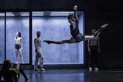 Sydney Dance Company in Rafael Bonachela's 'Ocho'. Photo by Pedro Greig.
